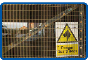 Northern Security fifth image