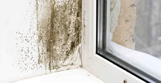 AG Damp proofing Ltd third image