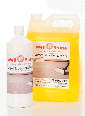 Wellshine Domestic Cleaners Taunton  fourth image