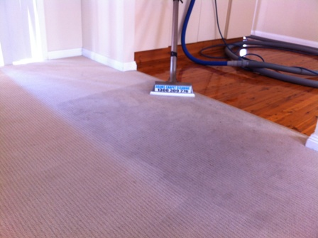Adam's Carpet Cleaning third image