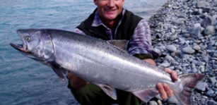 Alaskan Game Fisher second image