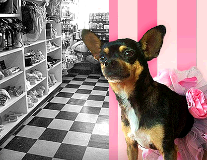Bow Wow Beauty Shoppe second image