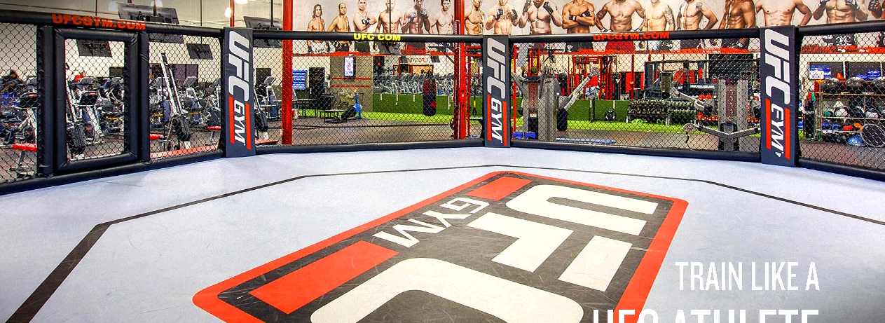 UFC Gym Spring Valley third image