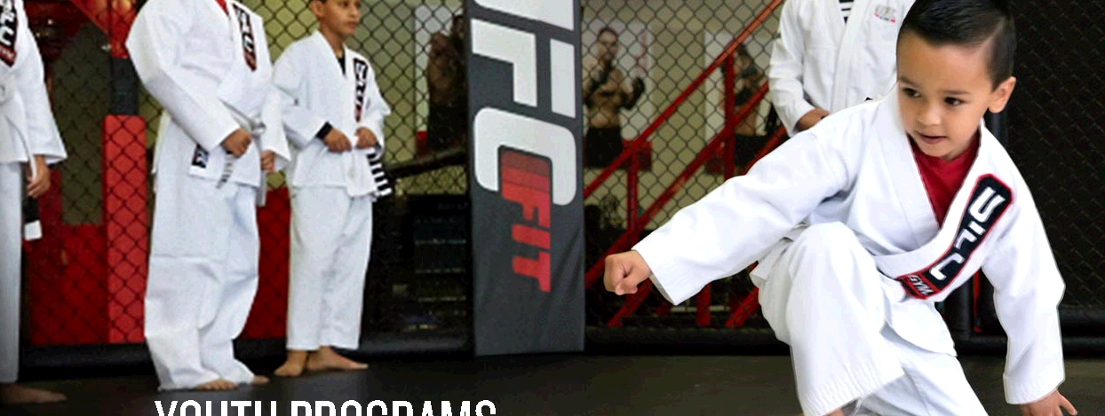 UFC Gym Spring Valley fifth image