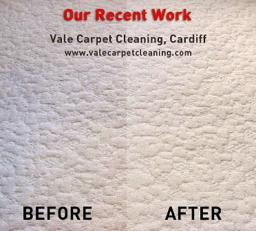 Vale Carpet Cleaning Cardiff first image