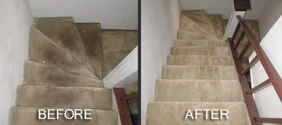 Vale Carpet Cleaning Cardiff fourth image