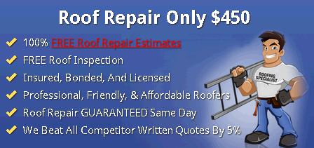 Affordable Roof Repair Indianapolis third image