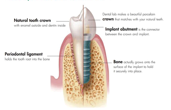 Key Dental Clinic third image