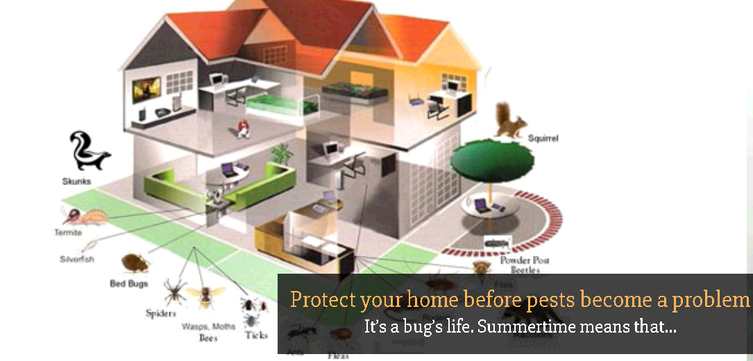 UltraPro Pest Protection fifth image