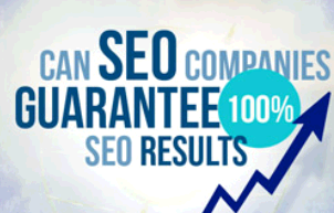 The Texas SEO Company second image