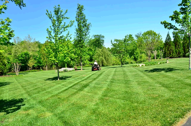 Grass Busters Lawn Service LLC first image
