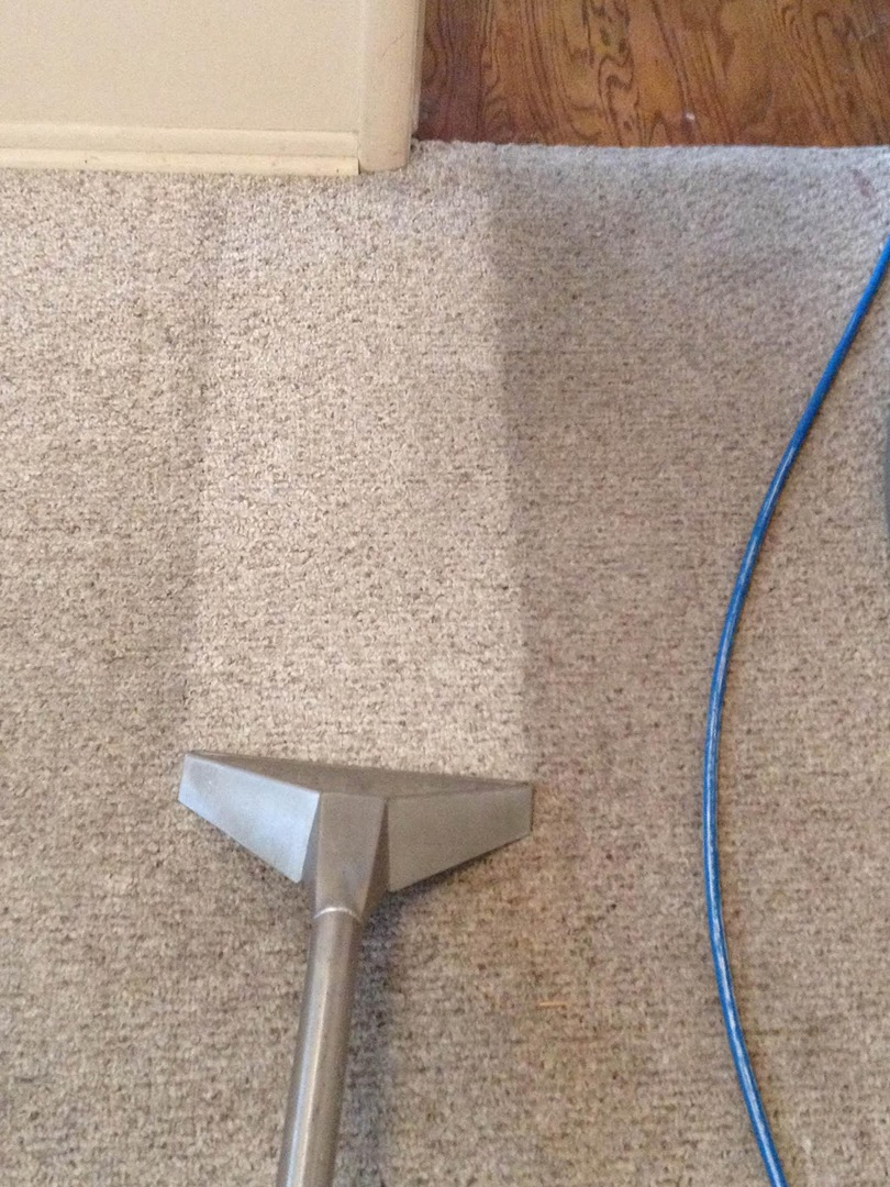 McDonough Carpet Cleaning third image