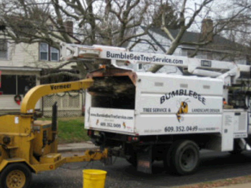 Bumblebee Tree Service & Landscape Design LLC fourth image