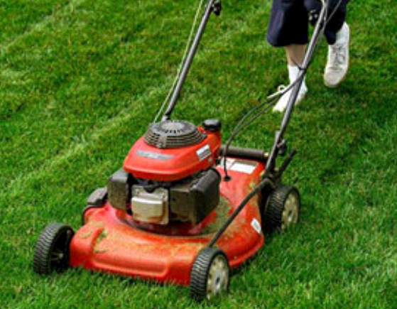 Texas Best Lawn Care & Landscape first image