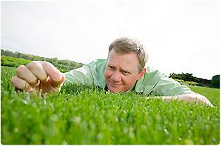 Texas Best Lawn Care & Landscape second image