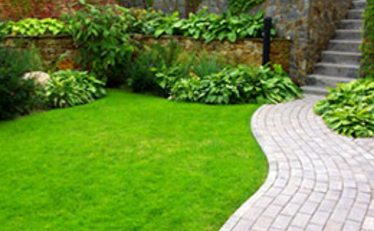 Texas Best Lawn Care & Landscape fourth image