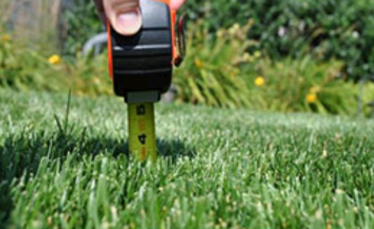 Texas Best Lawn Care & Landscape fifth image