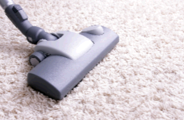 Premier Carpet Cleaning second image