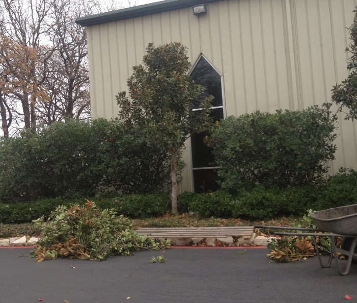 A-1 Lawn & Tree Service second image