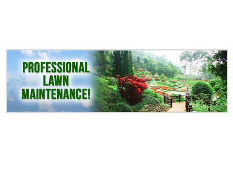Doug Fluters Landscaping third image