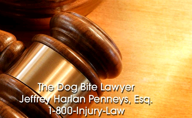 The Dog Bite Lawyer first image