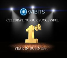 Wibits Web Solutions LLP fourth image