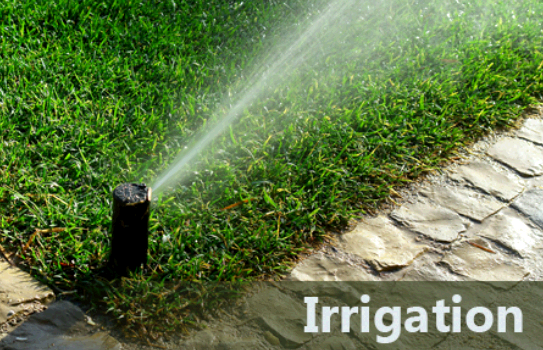 Texas Best Lawn & Landscaping/Irrigation second image
