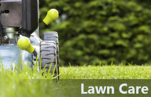 Texas Best Lawn & Landscaping/Irrigation third image