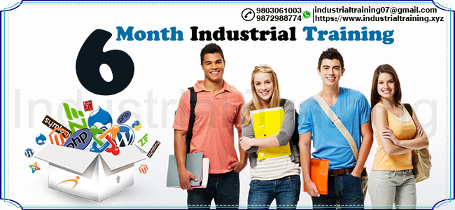 Industrial Training first image