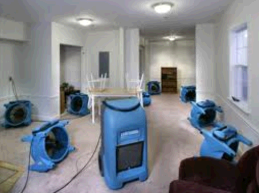 Dave's of Naperville Carpet Cleaning Service second image