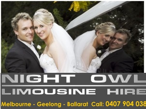 Night Owl Limousine second image