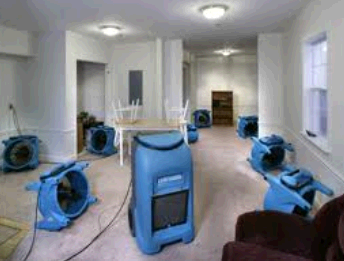 David's Carpet Cleaning of Bartlett second image