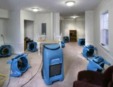 Dave's Carpet Cleaning of Buffalo Grove first image