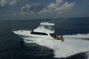 Ultimate Fishing Charters first image