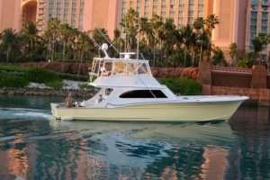 Ultimate Fishing Charters third image