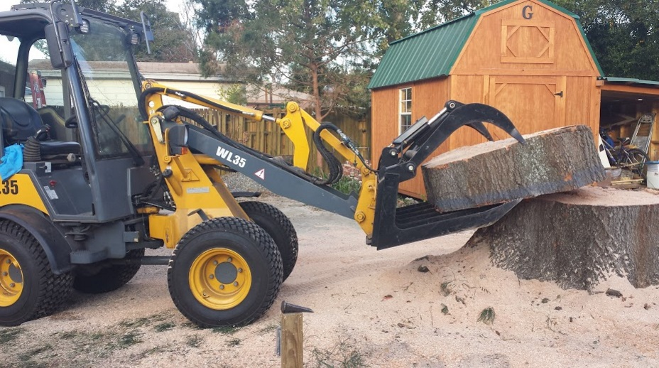 Wayne's Tree Service LLC first image