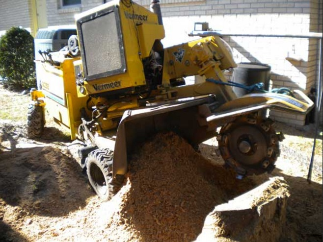 Wayne's Tree Service LLC second image
