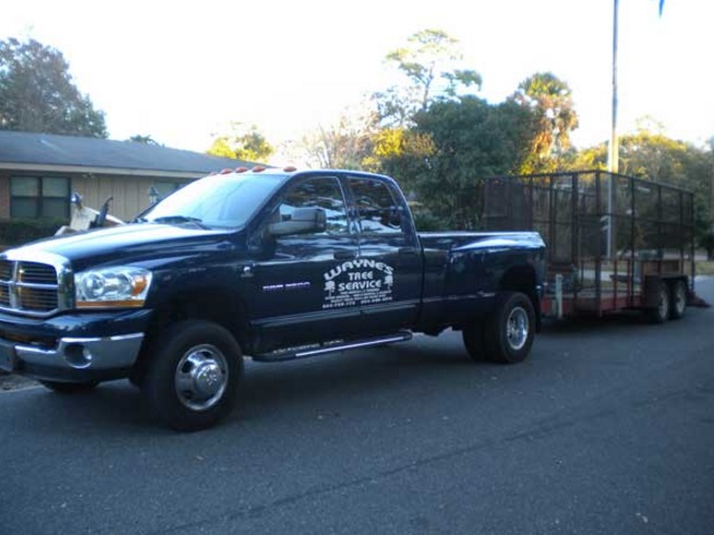 Wayne's Tree Service LLC fourth image