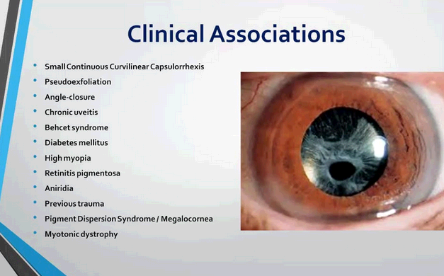 International Ophthalmology Portal first image
